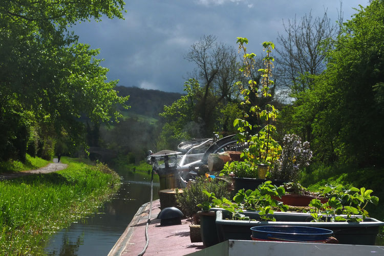 Narrowboat traveling from Bath to Dundas, UK Alternative Lifestyle Boat Life Canals And Waterways EyeEmNewHere Green Kennet And Avon Canal Liveaboard Narrowboat Off Grid Potted Plants Roof Garden Small Garden Springtime Sunny