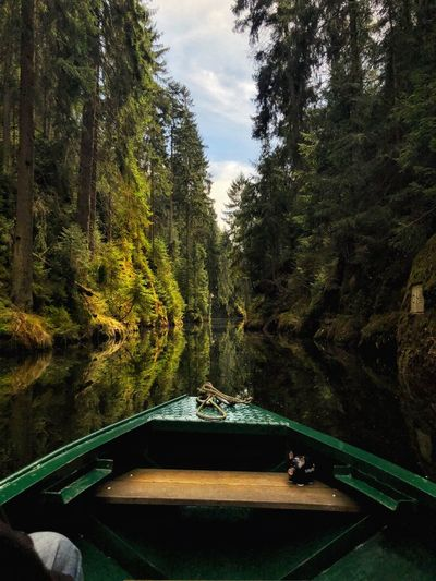 Into the wild Landscape_photography EyeEm Nature Lover Boat Outdoors Landscape Wood Sea Travel Nature Sunlight