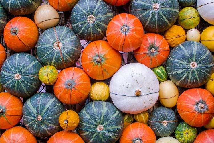 Full frame shot of pumpkins at market for sale