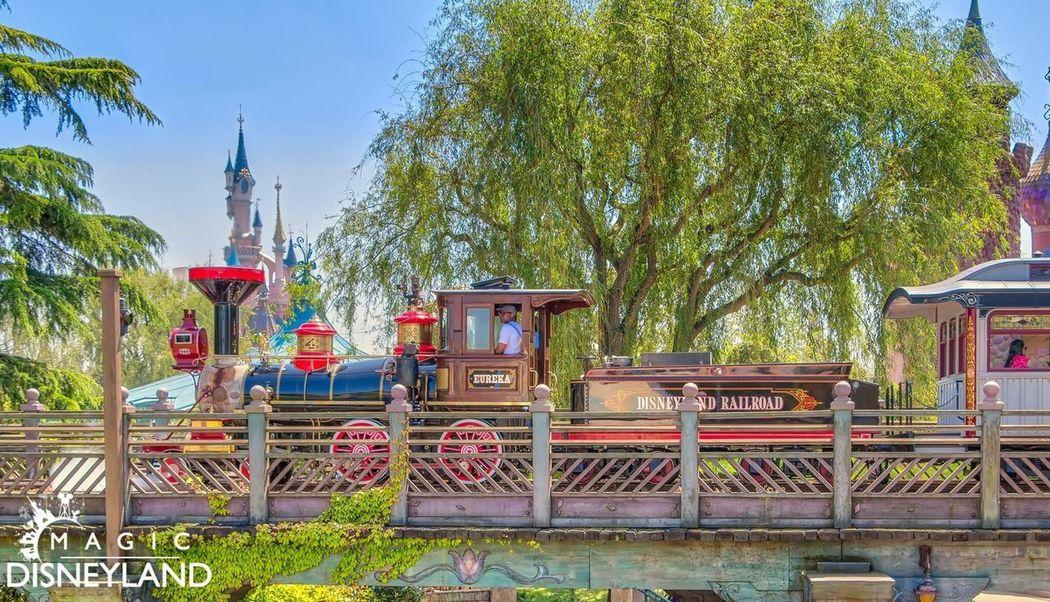 Tree Travel Destinations Nature Disneyland Paris Amusement Park Disney Disneyland Disneyland Resort Paris Disneylandparis Cloud - Sky Happiness