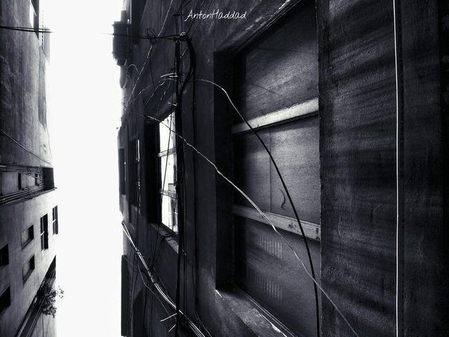 perspective 2 NEM Architecture Monochrome NEM Submissions NEM Black&white