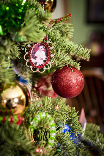 sweet memories Bauble Celebration Christmas Christmas Decoration Christmas Lights Christmas Ornament Christmas Tree Cultures Decoration Hanging Holiday - Event Indoors  No People Tradition Tree