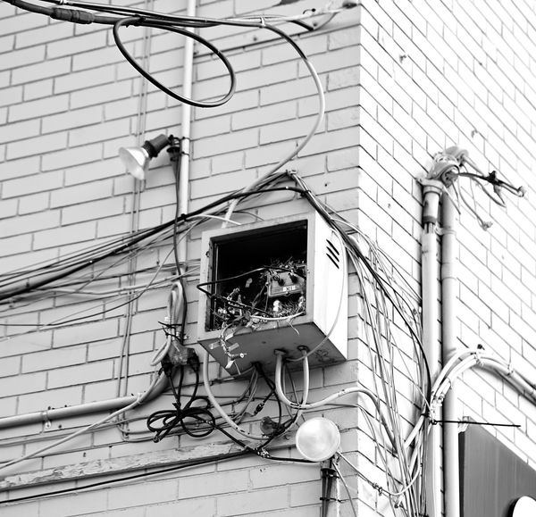 bird nest in a box Bird Birs Black And White Box Electrical Equipment Lights Monochrome Mountain Winter Wire