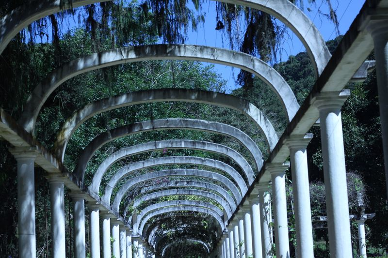 Jardim Botânico Architecture In A Row Built Structure Modern No People Architectural Column Curve Day Travel Destinations Panoramic Sky Tree Outdoors