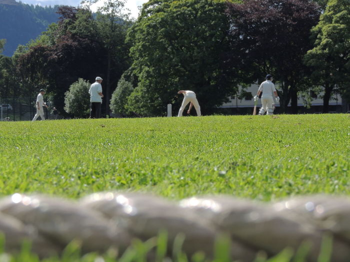Cricket Field Cricket Cricket Match Day Field Grass Green Color Growth Men Nature Outdoors People Real People Sky Tree