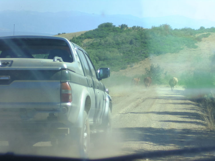 #OnTheRoad Arid Climate Camino De Santiago Car Travel Desert Desert Road Desert Trip Holiday Jakobsweg Journey Land Vehicle Motion Moving On The Move On The Road On The Way Outdoors Safari Scenics SPAIN Travel Destinations Traveling Trip Way Of Saint James Motionphotography No Filter