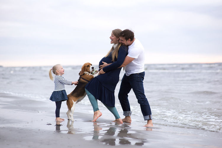 Family Barefoot Beach Bonding Casual Clothing Childhood Day Dog Enjoyment Family Father Full Length Fun Happiness Leisure Activity Lifestyles Love Men Outdoors Playing Real People Sea Togetherness Walking Water