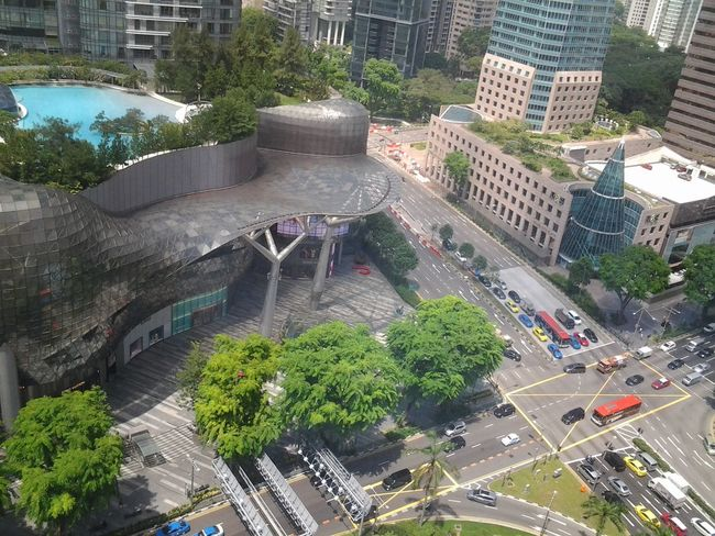 Point Of View of Adapted To The City High Angle View Land Vehicle Architecture Tree Built Structure Rooftop Pool Building Exterior at Orchard Central Singapore Travel Destinations Travel Photography