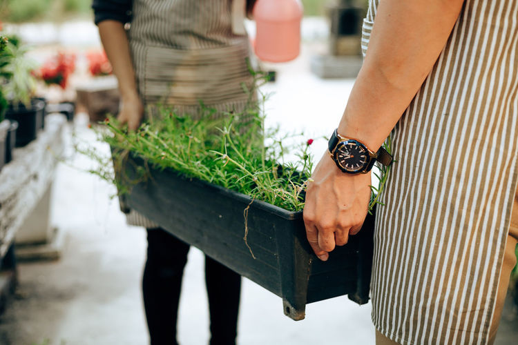 Midsection of people carrying potted plant while standing outdoors