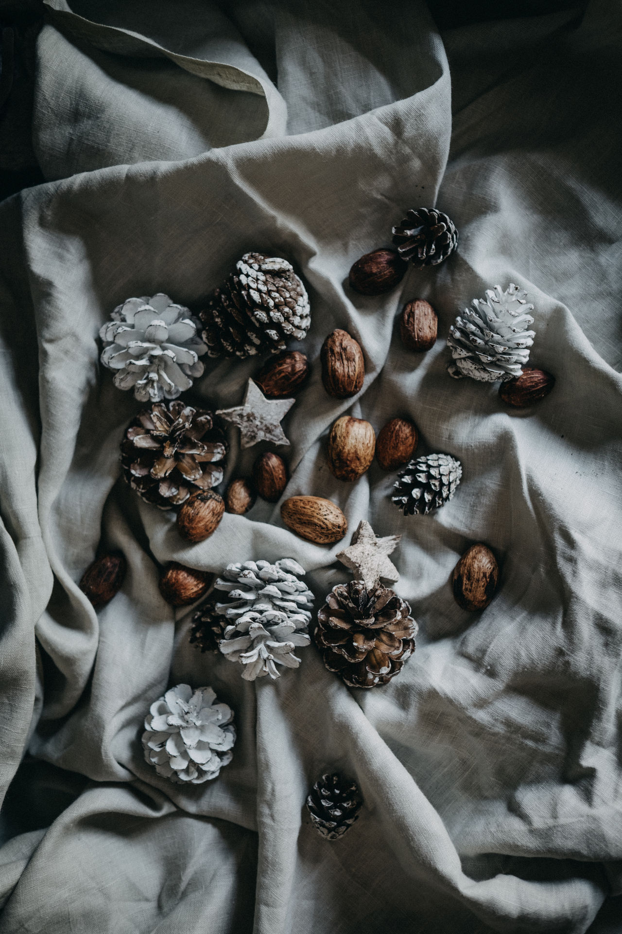 Directly above shot of pine cones and walnuts on textile during christmas