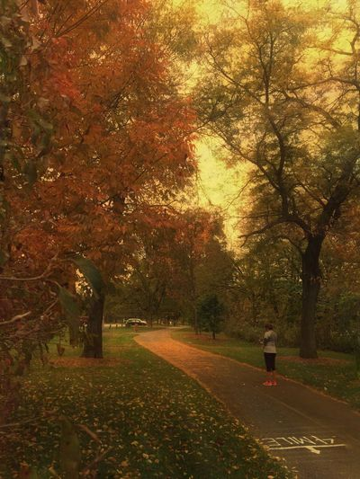 Autumn🍁🍁🍁 Fall Beauty Fall Colors Woman Woman Looking Down Getting Ready Cold Weather Jogging Autumn Colors Trees Narrow Path Daytime Daylife Daylight The Fox River At Montgomery, Illinois Fox River Landscape Landscape_Collection Oswego, IL Long Goodbye The Secret Spaces Lost In The Landscape