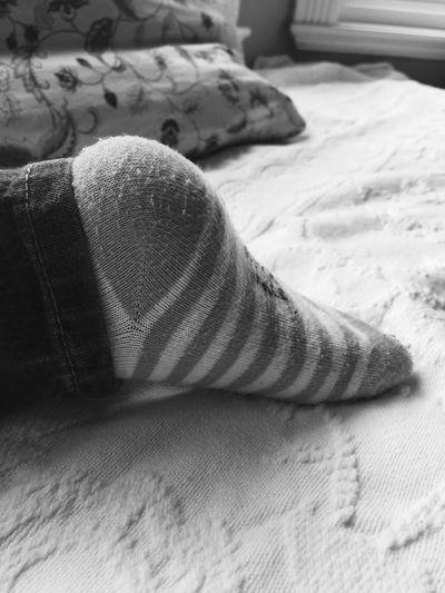 Sweet Feet Hiya Sweet Bear Shades Of Grey