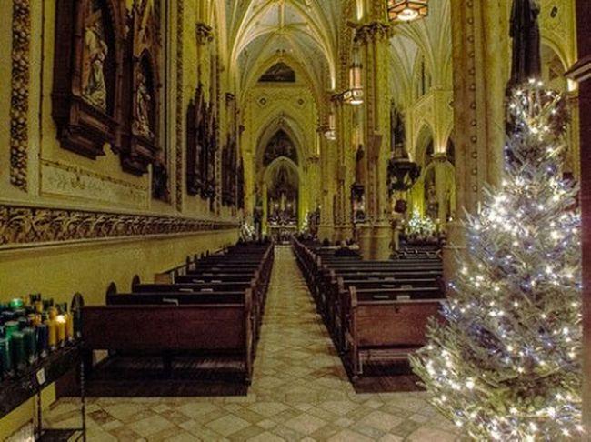 Romancatholic Christmas2015 Catholic PolishParish Ohio Cuyahoga County Cleveland Samsumg EX2F NoCameraFlash Merry Christmas