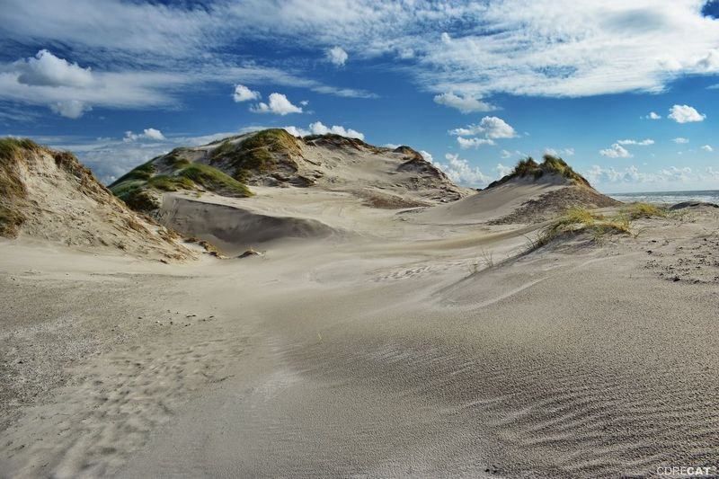 Denmark Denmark 🇩🇰 Landscape_Collection EyeEm Nature Lover EyeEm Masterclass Dunescape Northsea Dunes Beach Sandy Beach Beach Photography Sand Dune Sand Summer Sky Landscape