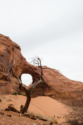 Driftwood on rock formations in desert against sky