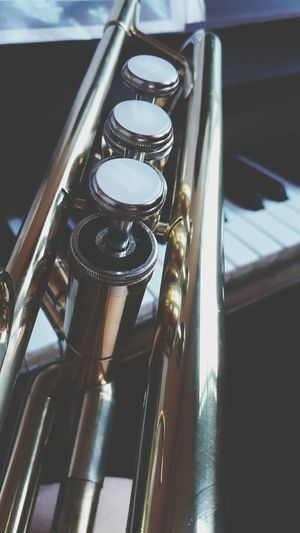 Music Classical Music Musical Instrument Close-up South Africa Forever Passion Trumpetplayer