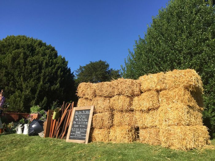 Hay Bales Flowers Colour Of Life Wedding Photography The Moot Outside Photography Outside Wedding Beautiful Day Grass Gathering Wedding Wedding Flowers Sky Signs