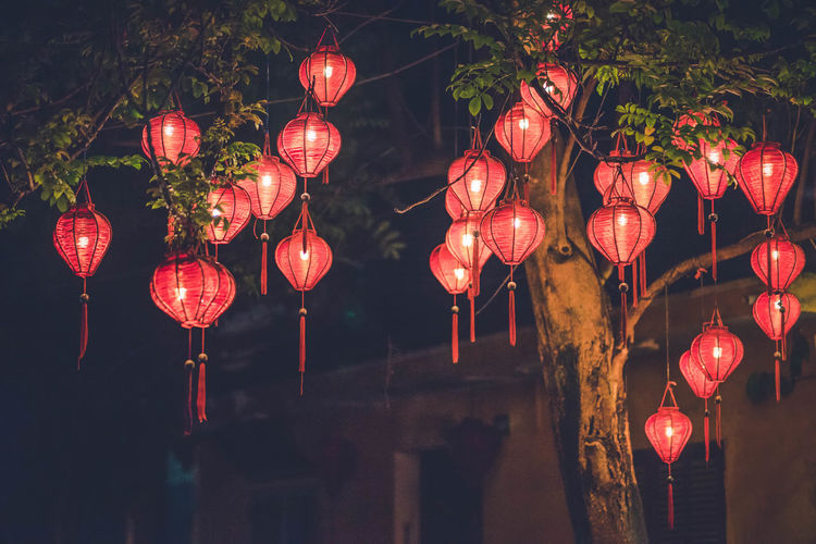 Lighting Equipment Chinese Lantern Lantern Decoration Hanging Chinese New Year Chinese Lantern Festival Celebration Holiday Traditional Festival Low Angle View Nightlife Event Illuminated Night Red Festival Outdoors