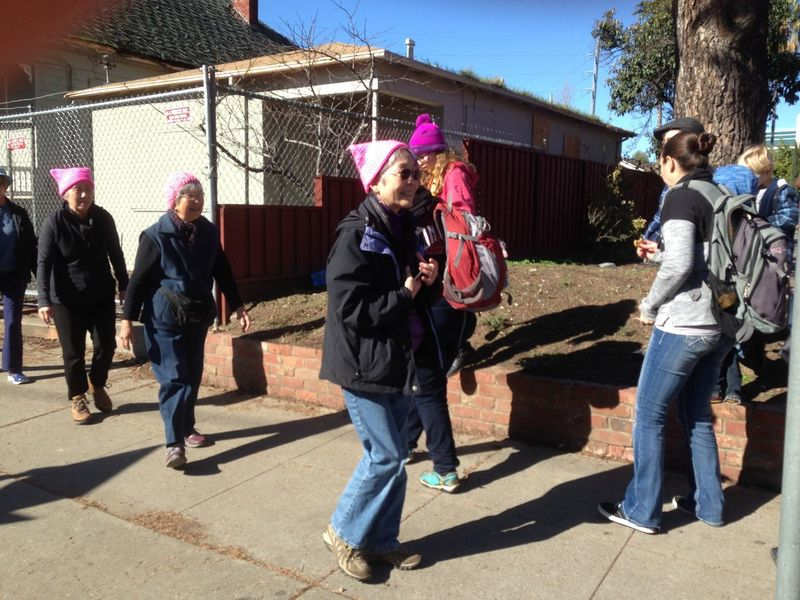 womens march San Jose 2018, January 20, 2018 Activists Politics Protest Womens March San Jose Adult Adults Only Building Exterior Civil Rights  Cottages Day Full Length Marching Men Outdoors People Pink Cat Hat Pink Hat Protesters Real People Shadow Sunlight Tree Womens March Womens March 2018 Young Adult