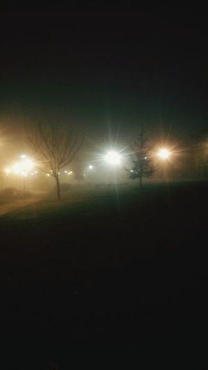 Foggy night... Nature Foggy Foggy Night Fog