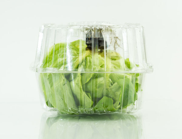 Food Stories Aquaponic Close-up Food And Drink Freshness Plastic Green Green Color Healthy Hydroculture Indoors  Lettuce No People Organic Plant Pot Roots Salad Colour Of Life Showcase April Still Life Studio Shot Table Transparent White White Background