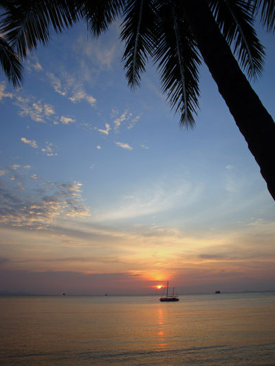 Sky Sea Water Sunset Scenics - Nature Cloud - Sky Nautical Vessel Moored Sailboat At Sunset Idyllic Palm Tree Nature No People Outdoors Thailand Koh Samui,Thailand Torist Destination Travel And Leisure Horizon Tranquil Scene Beauty In Nature Horizon Over Water Colourful Sky Waterfront Sea And Sky Seaside