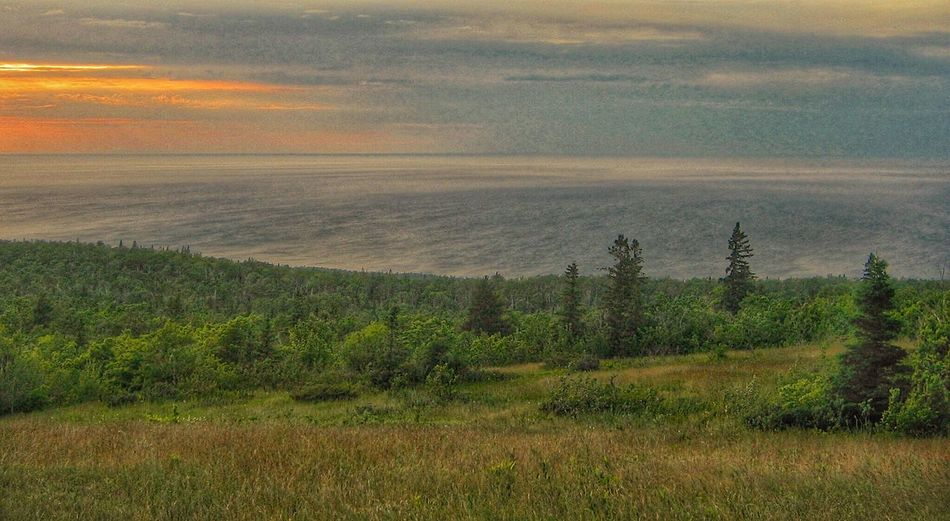 Lost In The Landscape Sky Green Flora Trees Lake Superior Nature Sunset Stillness Tranquil Scene Fieldscape