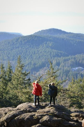 These two are so fun. It was a beautifully sunny day and they just stared out at the trees. Boys Mountain Peaceful PNW Anacortes Children Trees Two People Hiking People Togetherness Adventure Mountain Nature Pine Tree Scenics