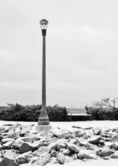 Mr Lamp Black And White Bench Lamp Lamp Post Bnw Bushes Park Winter Snow Path Moody Lonely