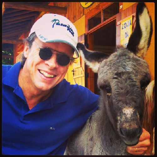 Que tal levar este jegue pra casa? / How about take home, this beautiful donkey? Jegue Cavalo Donkey Horse