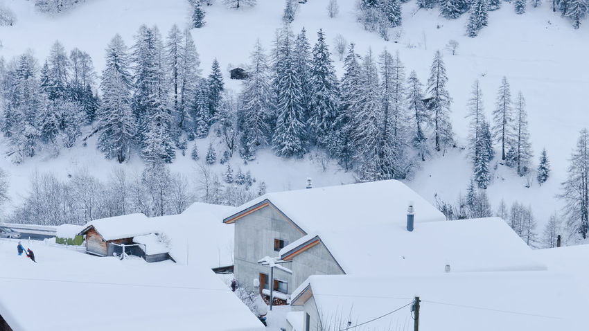 Architecture Building Exterior Built Structure Cabin Cold Temperature Forest House Lötschental Mountain Mountains Nature Outdoors Pinetrees Scenics Snow Snowing Swiss Alps Switzerland Travelling Home For The Holidays Tree Vacation White White Background Miles Away Winter