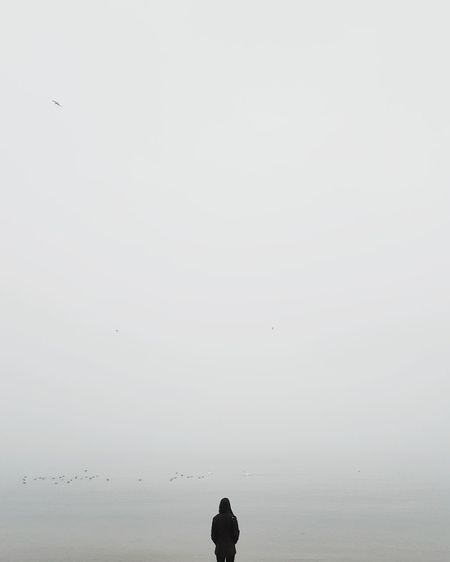 ⬜👤🌊︱filling the blank space VSCO Minimalism Minimal Silhouette Birds Nature_collection Nature Samsungphotography Bird Outdoors Silhouette Animal Wildlife Animals In The Wild Nature Animal Themes Beauty In Nature People Beach Sky Sea EyeEmNewHere