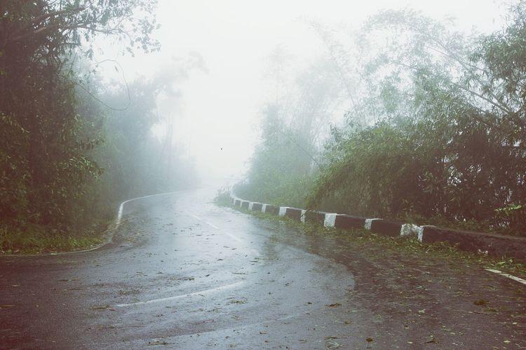 Cyclone Bejisa Réunion Island ♡