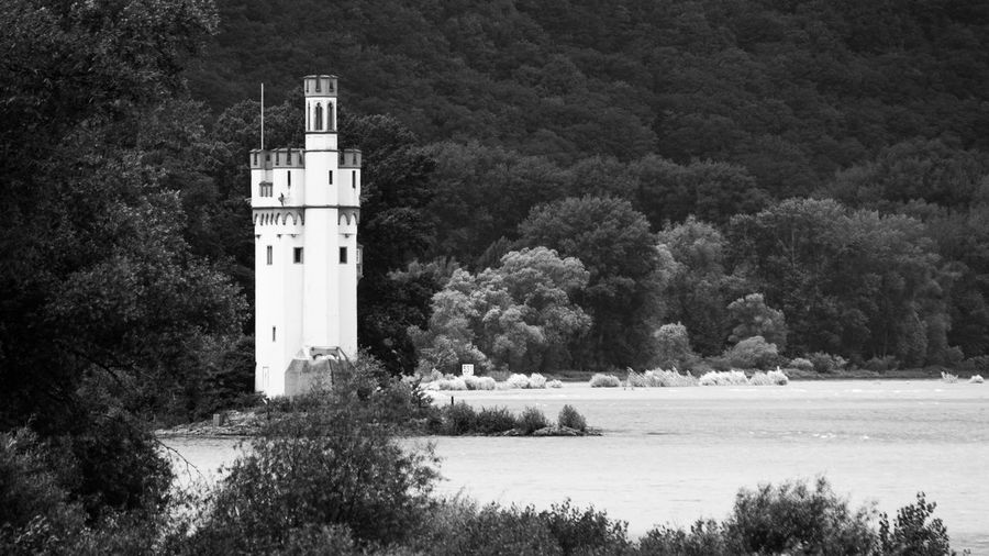 Architecture Binger Mäuseturm Blackandwhite Blackandwhite Photography Building Exterior Built Structure Day Germany Island Landscape Mice Tower Mäuseturm  No People Outdoors Rhine River River View Tower Tree