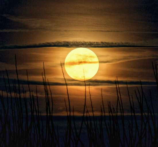 New Year Super Moon Moonlight Moon Nature Tranquil Scene Scenics Beauty In Nature Tranquility AI Now! Idyllic Sky Outdoors No People Silhouette