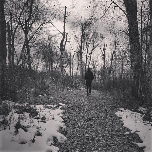 Hiking Black And White Relaxing Alberta Canada Reflection Tranquility Beauty In Nature Life Peaceful Winter Snow Trees Woods Grass Leaves Mylife Alberta Walk Myson Family Hike Day One Person Real People Outdoors Nature Standing Tree Children Only People Childhood