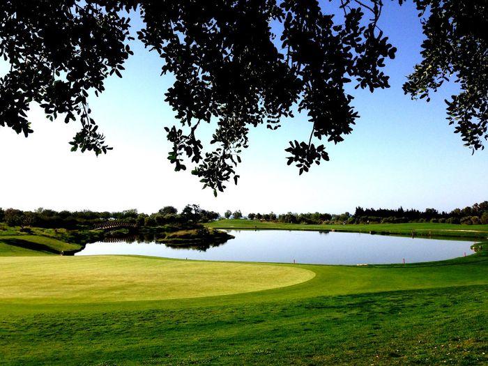 Golf Golf Course Grass Green - Golf Course Green Color Landscape Nature Scenics Sport Tranquility Tree Water Quinta Da Ria Algarve