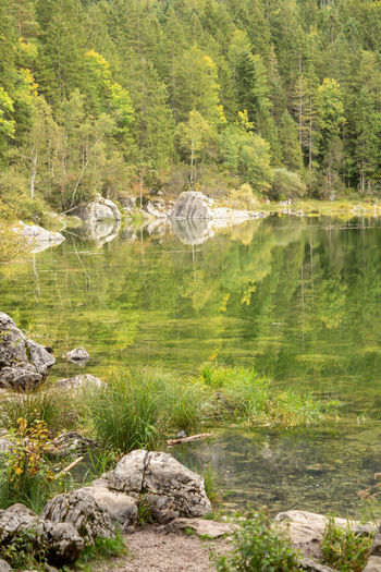 Alp Autumn