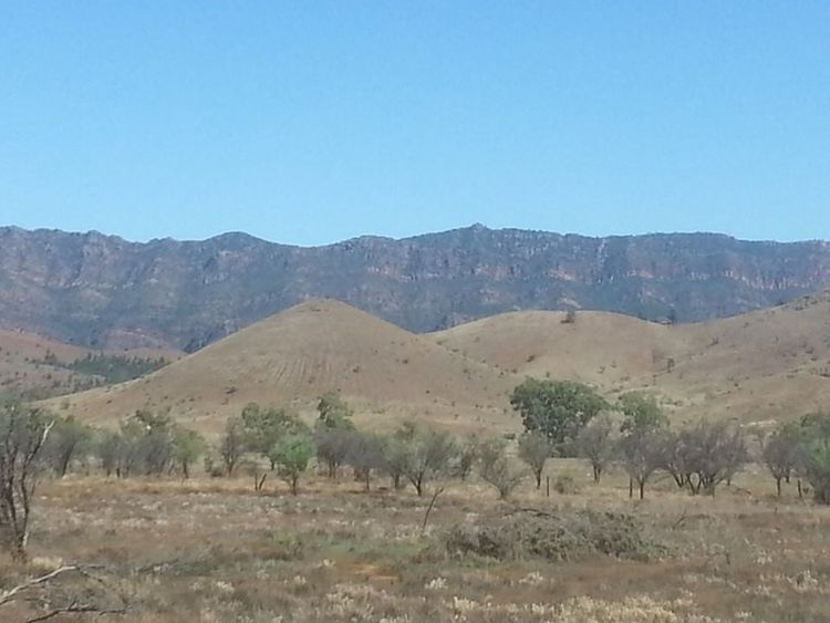 Flinders Rangers South Australia. Photo taken from moving car. Landscape Nature Clear Sky Beauty In Nature Mountain Hills And Valleys Outdoors Cliffside Cliffs And Trees