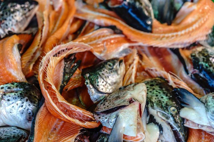 Full frame shot of dead fishes for sale at market