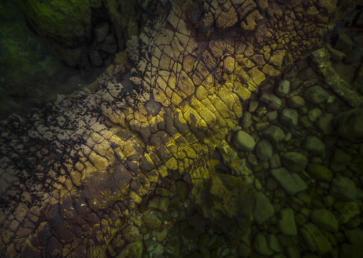Rock Formation Drone  Aerial View Aerial Photography Dronephotography Sunset Light Beach Backgrounds Textured  Full Frame Pattern Close-up Moss Blooming Abstract Backgrounds Abstract Color Gradient