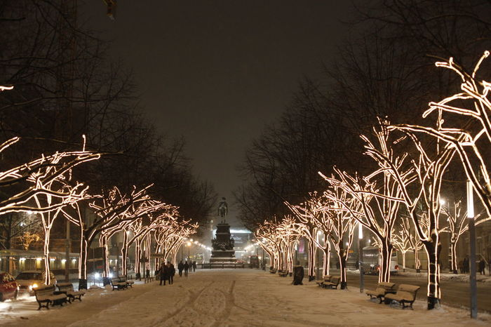 Unter den Linden Architecture Bare Tree Branch Building Exterior Built Structure City Ice Illuminated Mode Of Transport Night No People Outdoors Sky Snow Street Light Tree Unter Den Linden Weihnachtsbeleuchtung
