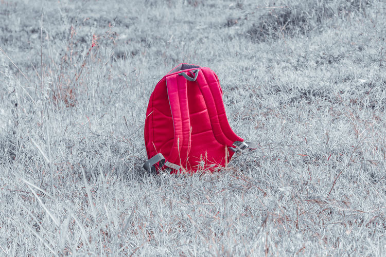 Red umbrella on snow covered field