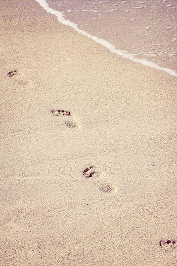 Miss summer. ?☀️