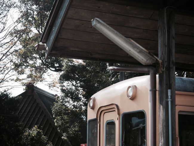 小湊鉄道 上総中野 Built Structure Low Angle View No People Architecture Building Exterior Outdoors Day Tree