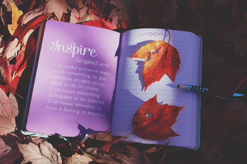 Inspire! Unplugging and back to the basics - brainstorming ideas out in nature with pen and paper and motivational positive affirmations. EyeEm Nature Lover Pages Of A Book Annie1029 Nature Season  Writing Red Color Motivation Thought And Reflection Diaries Notebook Journal Foliage Leaves Sunlight And Shadow Lavender Colored Purple Words Inspirational Text Leaf No People Autumn Communication Close-up Day Love Yourself Press For Progress Modern Workplace Culture Inner Power Visual Creativity
