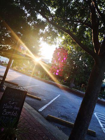 Sun Tree Outdoors Parking Lot No People Sidewalk Wind Chimes Street Light Chalkboard Sunset