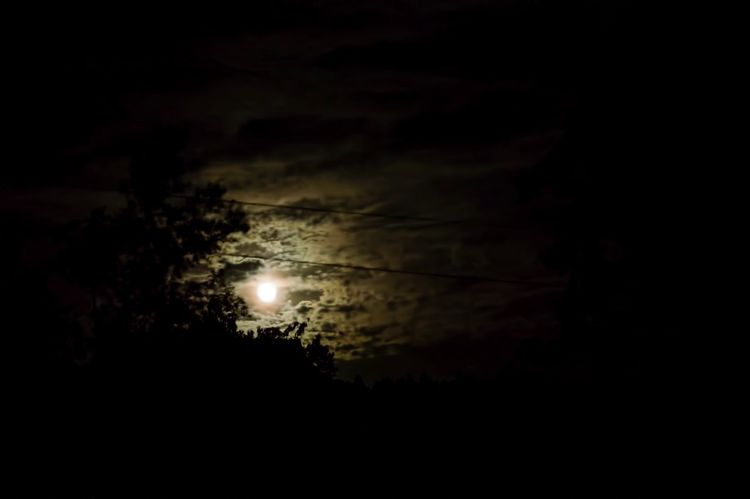 Nikon 50mm Moon Overnight Success