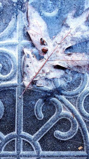 Full frame shot of frozen metal