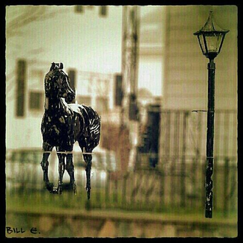 Granite Horse On The Front Lawn...
